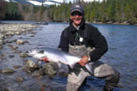 Kalum River Chinook King Salmon