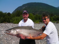 55-pound Skeena River Chinook King Salmon.  It measured 45 inch by 29 inch girth