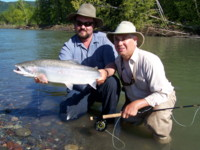 Fly Fishing Skeena River wild Steelhead