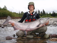 Skeena River Chinook (King) Salmon