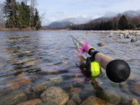Spey Fly Fishing for Steelhead