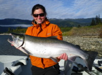 Kitimat River Northern Coho Silver Salmon