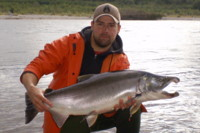 Kitimat River (Coho) Silver Salmon